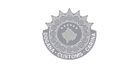 Kosovo Customs